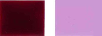 Pigment-violent-19-Color